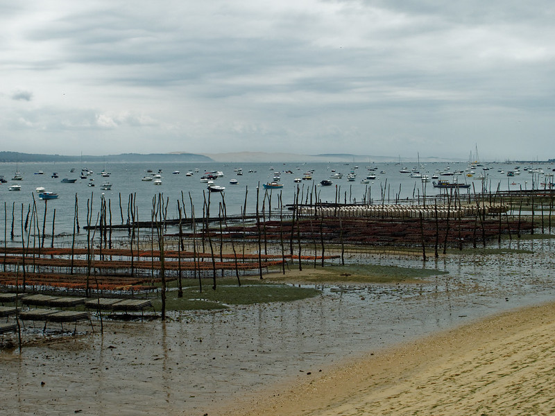 Bassin d'Arcachon 29080017967_b92912f7e1_c
