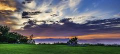 Lake Erie Bluffs_20180813_23