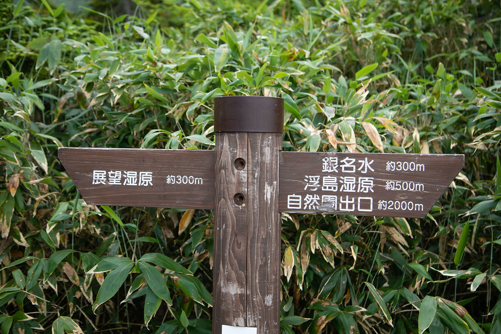 Nagano_otari-32