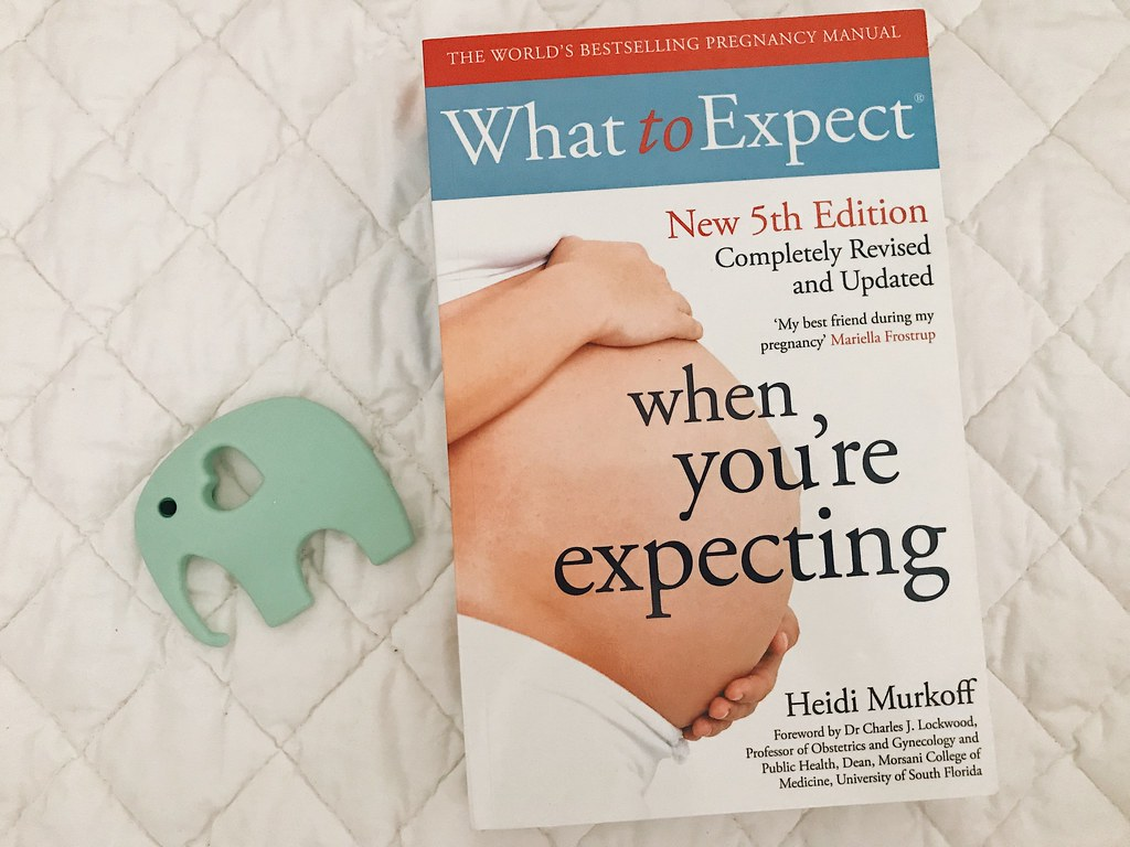 The Baby Books I Have Been Reading Throughout my Pregnancy   Hannah and The Blog