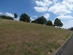 Fort Royal Park, Worcester