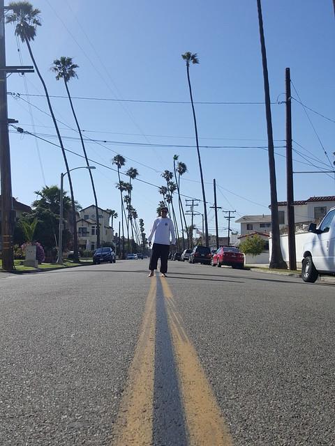 Palm Street