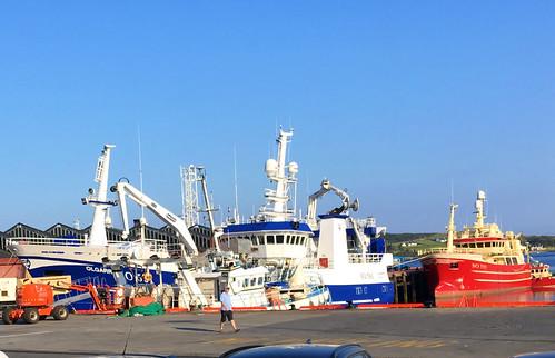 Fischkutter im Hafen von Kellybegs