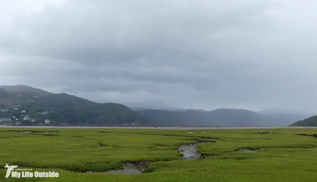 P1170796 - Mawddach estuary