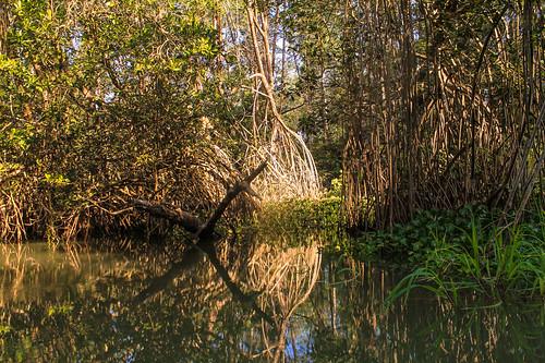 Río Arriba (68)