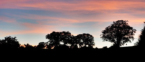 Sunset silhouette (buckaroos70)