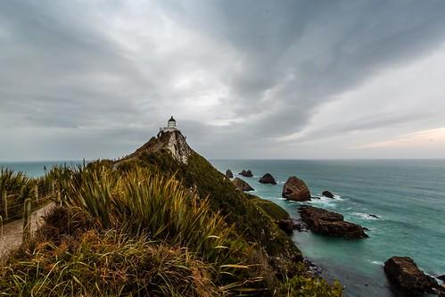 canon catlins curiobay nz nuggetpoint wildlife ahuririflat otago newzealand