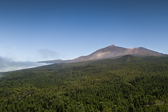 Mount Teide from Arenas Negras