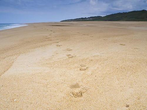 Praia Norte en Nazaré. Famosa por sus olas gigantes. #nazaré #Portugal #praia #playa #surf #olympus #lovenazaré #loveportugal #praianortenazare #praianorte