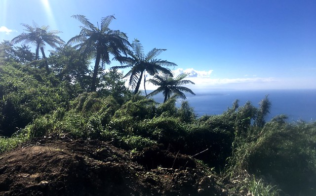 View from up high of the coastline of Tanna.