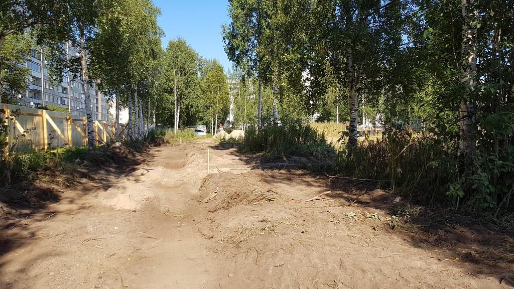 Берёзовый парк