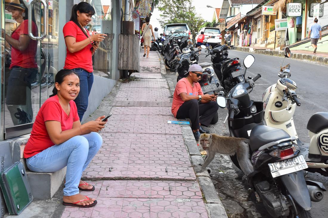 Bali-Ubud-(3)
