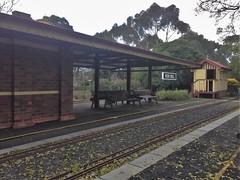 Box Hill Railway Station (miniature version!)