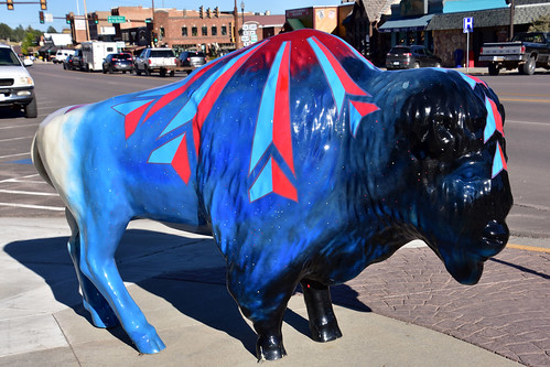 Bison as a work of art