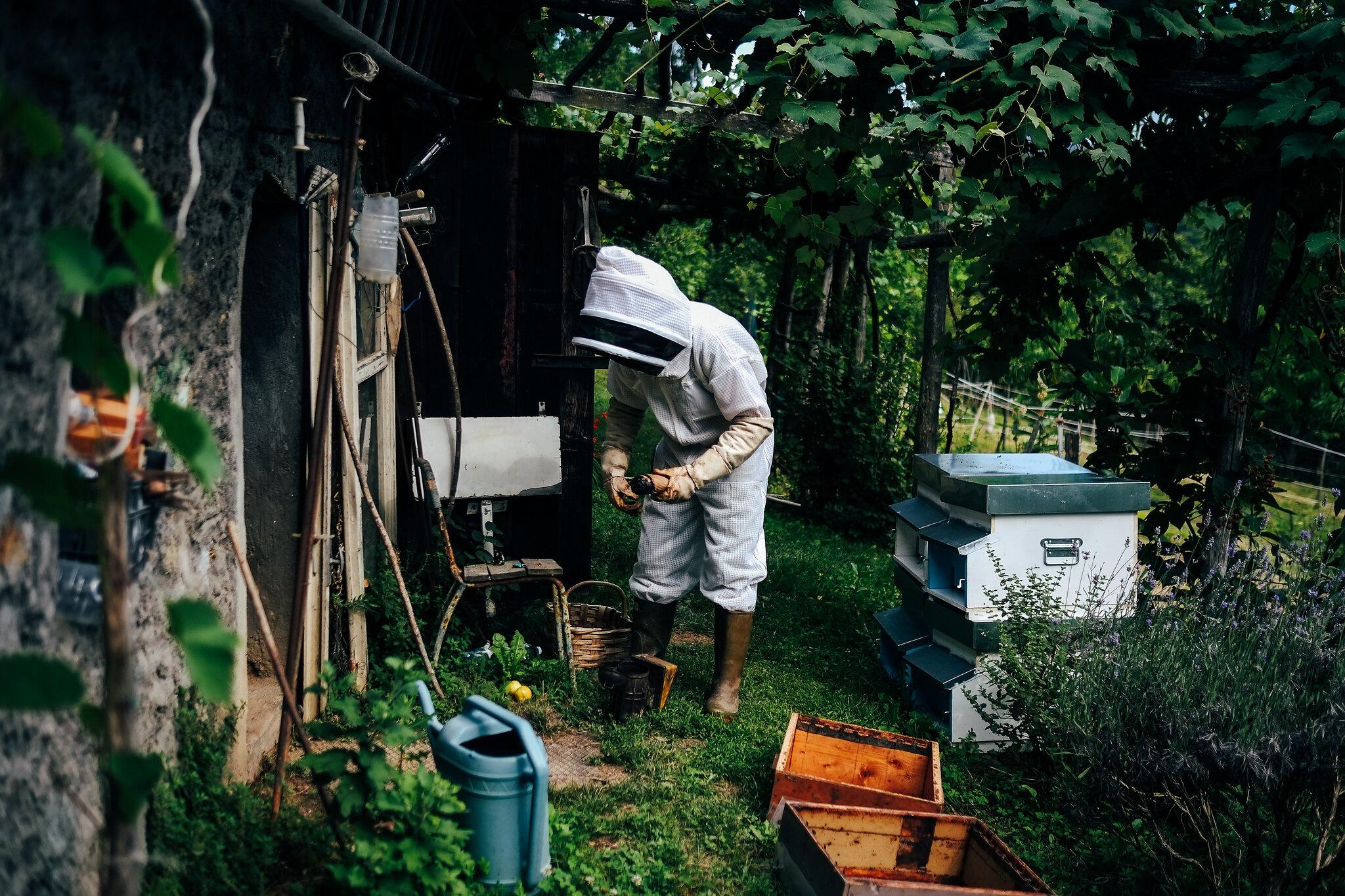 Beekeeping, Garessio, Italy