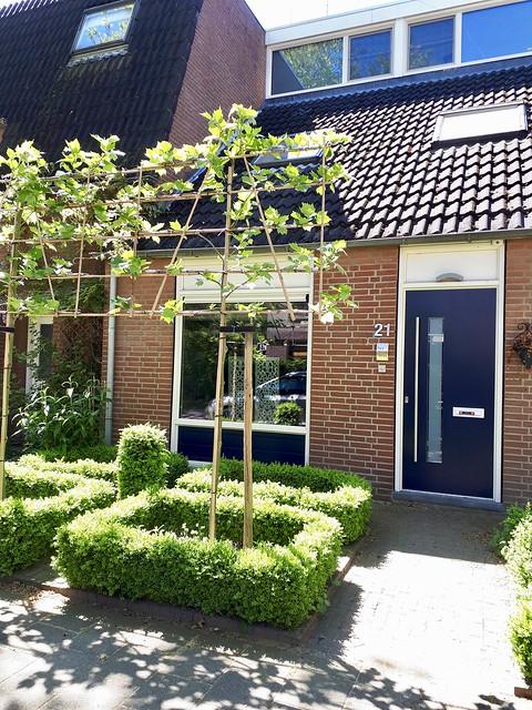 Buxus voortuin voordeur landelijk