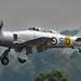 Hawker Sea Fury T.20 - G-CHFP / WG655 (1952)
