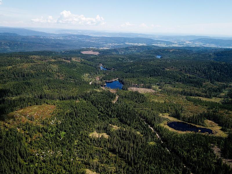 34-Utsikt mot Ormetjern og Dammyra fra Svartevannet (drone)