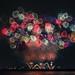 13th Koga Fireworks by shinichiro*@OSAKA