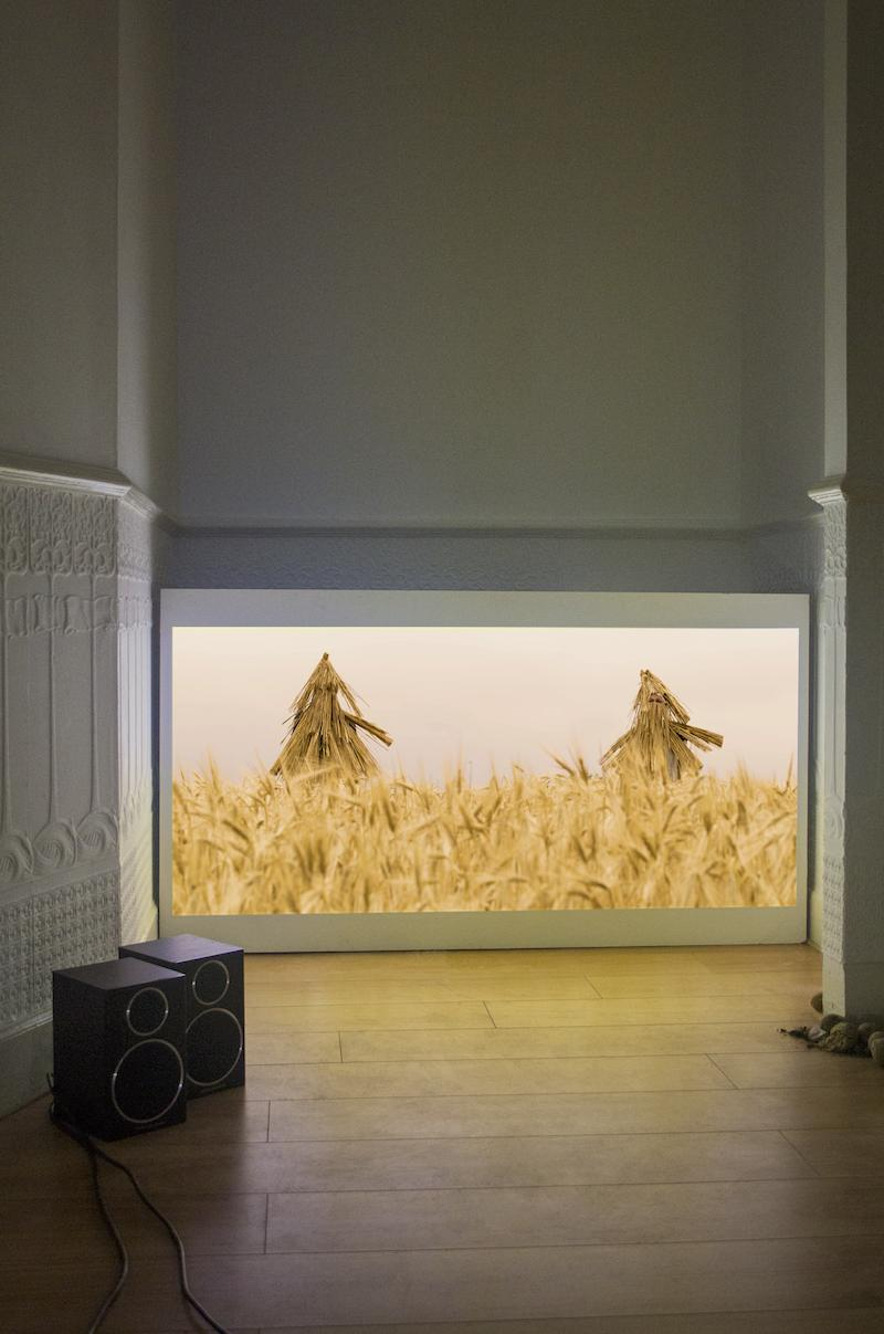 Ani Schulze, Under the Jaguar Sun, Installation detail, Hd projection, suet energy balls of bird feed, soil from various locations in Glasgow, Photo: Ben Soedira