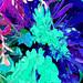 Abstract 4 by Karen L Thomas