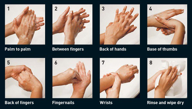 The right way to wash your hands
