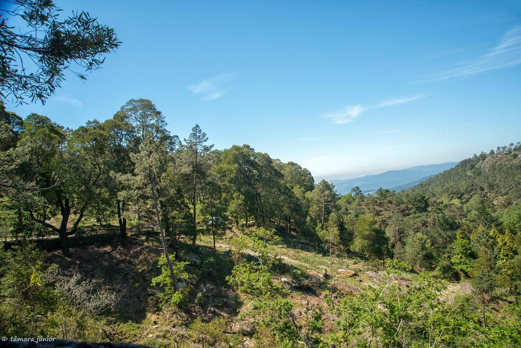 32.- Rota do Monte Aloia (261)