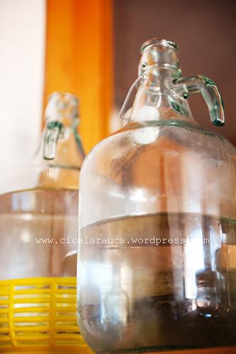 acqua a decantarsi per bevande fermentate