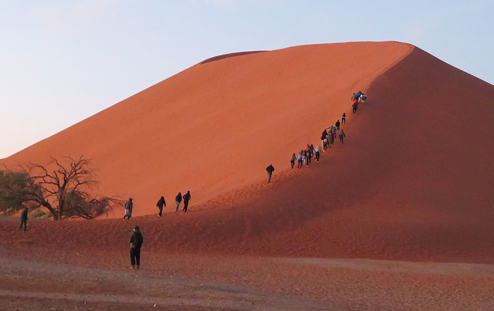 dune-45-namib-desert
