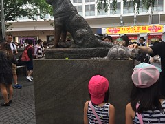 Cats on Dogs @ Hachiko