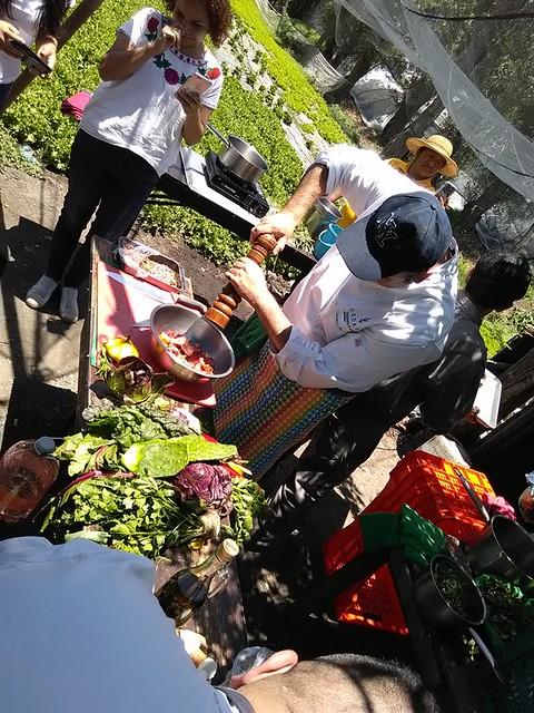 cedrón-alejandro-flores-xochimilco (7)