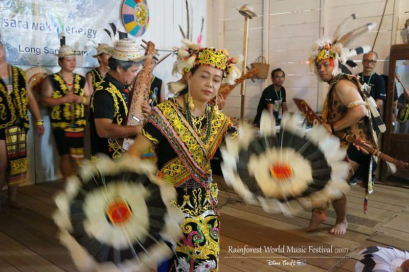 Rainforest World Music Festival 09