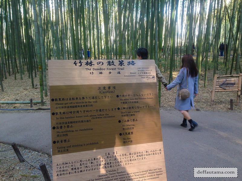 9 Hari Babymoon ke Jepang - The Bamboo Forest Trail 1