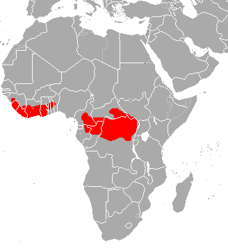 Map of Africa showing the range of the lowland bongo.