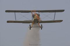 Royal Aircraft Factory SE-5A / Les Casques de Cuir / F-AZCN