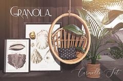 Granola. Carmella Set.