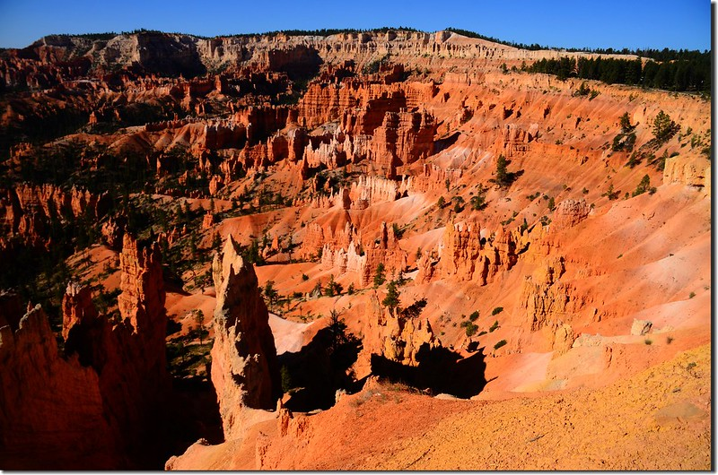 Rim Trail, Bryce Canyon (7)