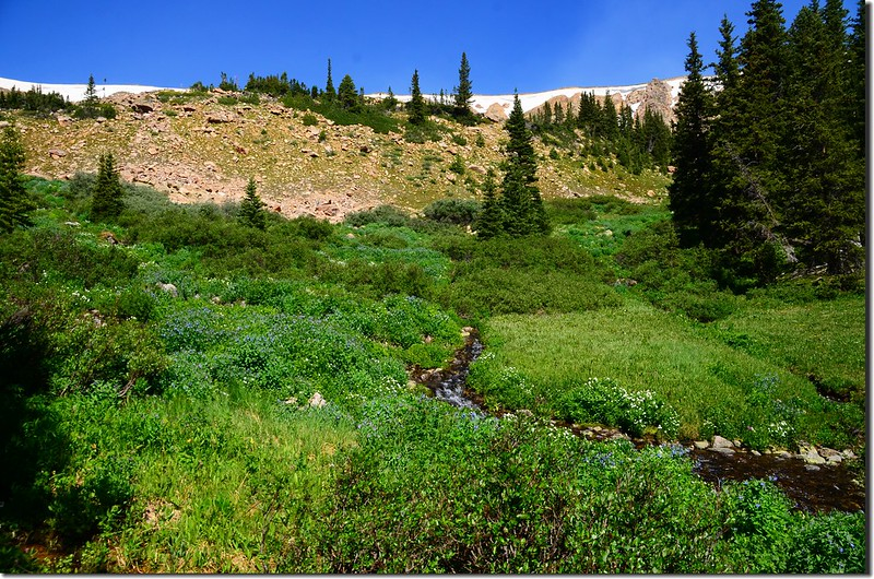 Current Creek (2)