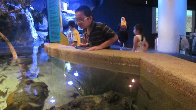 2012 10 25 Malaysia KualaLumpur (112), Canon IXUS 105