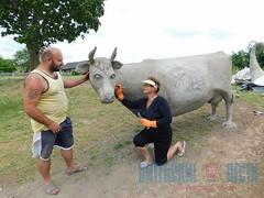 Хрюшка, корова и рог изобилия. Как Верхнедвинск готовится к «Дажынкам-2018»