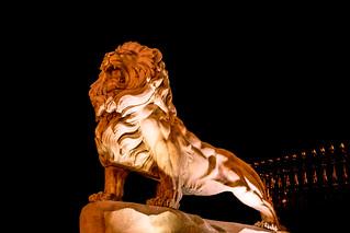 Lion Nation-Srilanka (සින්හ හෙළය)