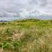 Seaton Dunes, The Snooks