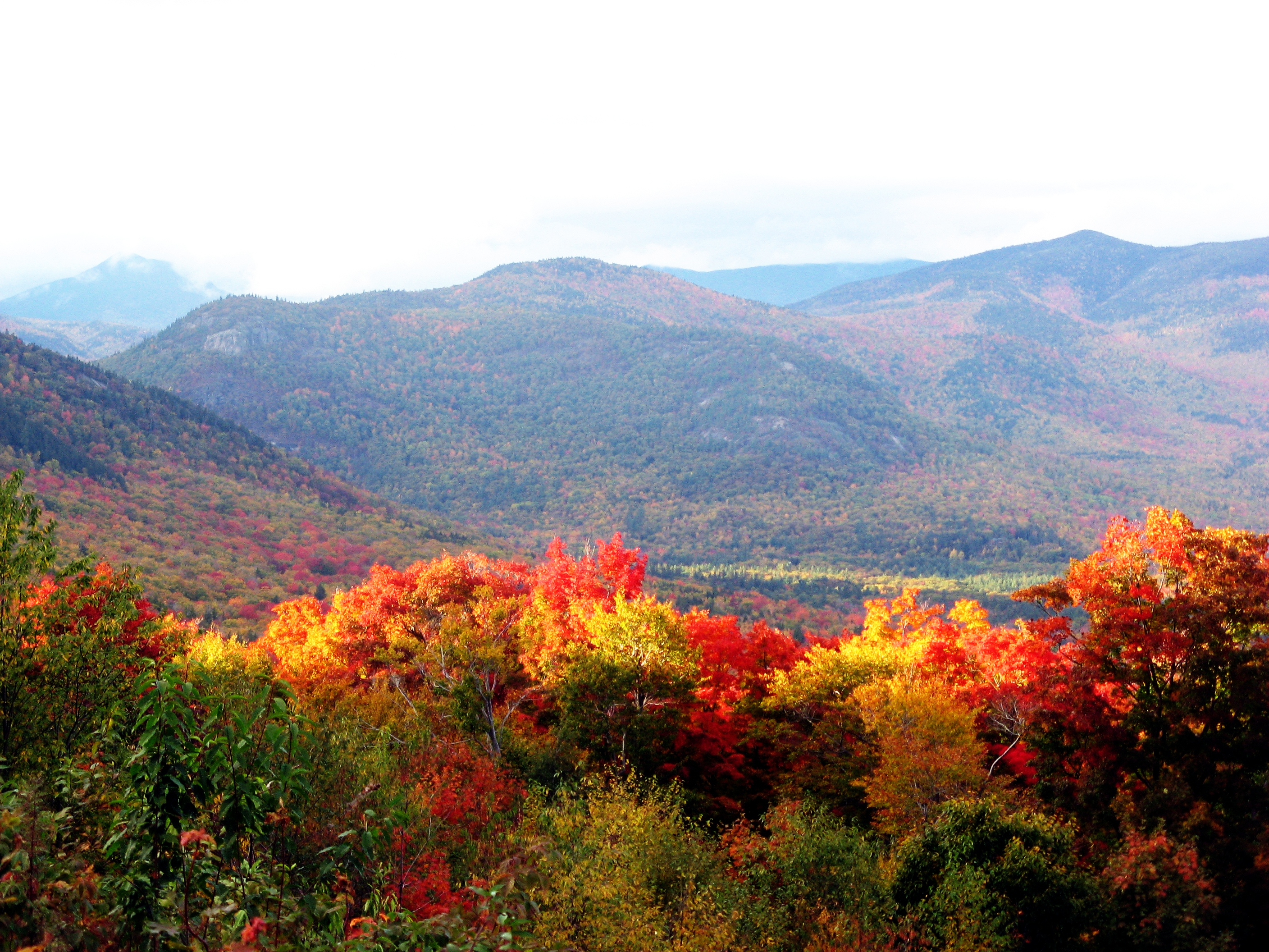 During autumn, the leaves on many hardwood trees in New Hampshire turn colors, attracting many tourists. Photo taken on August 9, 2009.