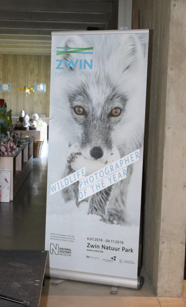 Worldlife Photografer of the Year in Zwin Natuurpark