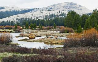 Tuolumne Meadow, Yosemite NP, CA 2015