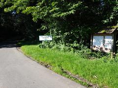 Forêt de Beuste en vallée de Nay aussi