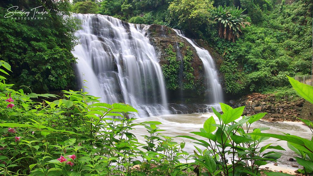greenery around Hinulugang Taktak