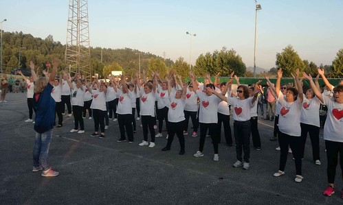 Movimento Sénior - Participação em eventos