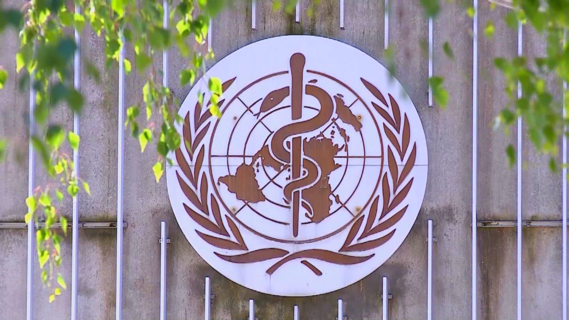 WHO releases new International Classification of Diseases as known as ICD-11
