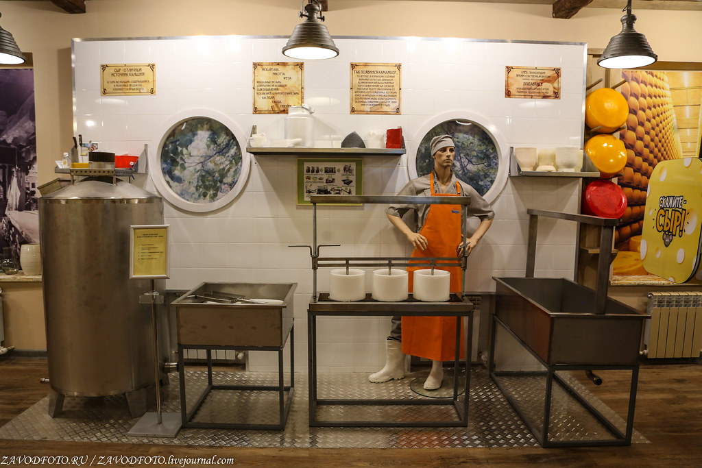 "Cruise on the ship ""Dmitry Furmanov.""Museum of cheese in Kostroma milk, a museum, they learned, production, which, holes, which, a piece, of Kostroma, product, more, came, very, contributes, head, maybe milk, time, costs, about"
